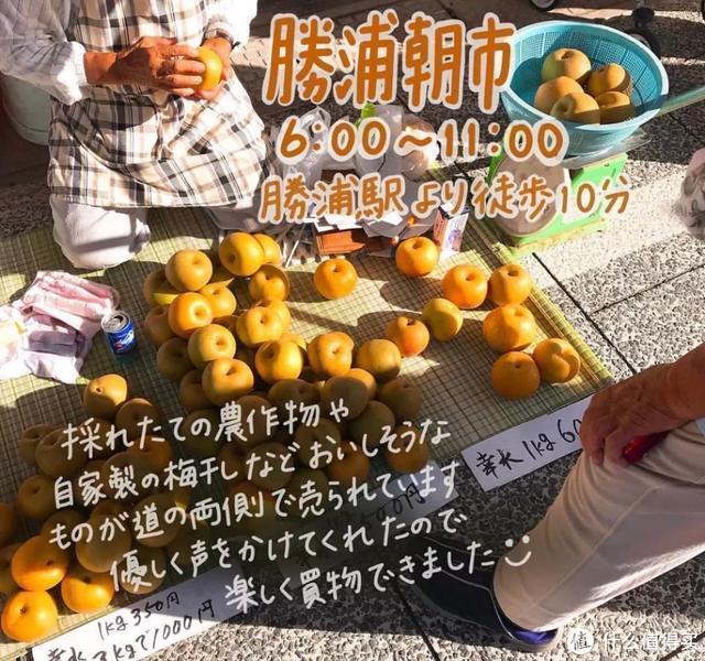 日本海鲜市场攻略,一张图让你克服选择障碍