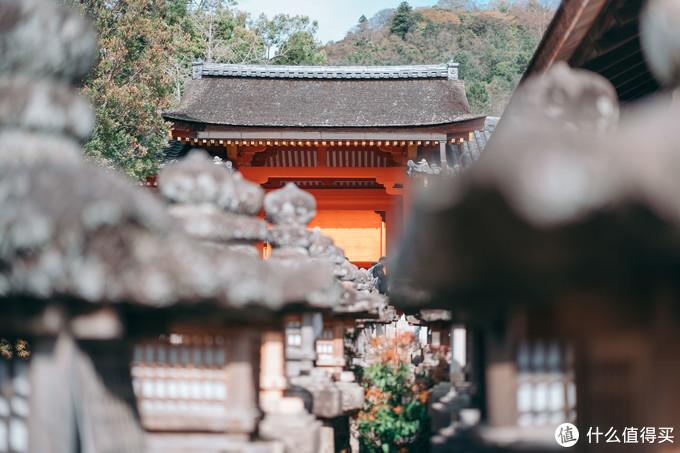 事無巨細,第一次出國旅游的經驗和教訓,日本攻略純干貨分享