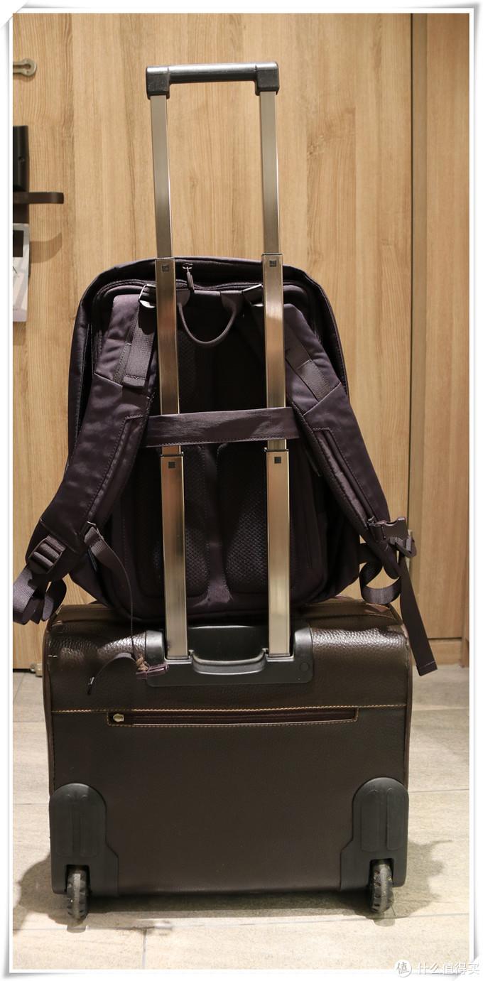行李箱固定绑带