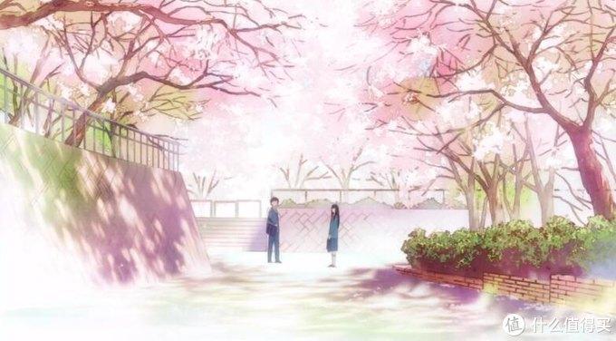 两个人的初遇,在樱花盛开的路口。