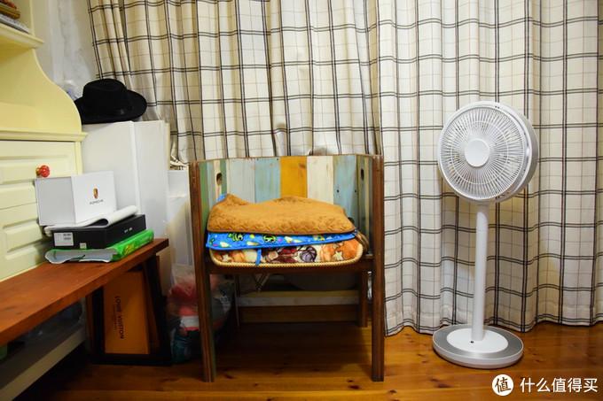 被风吹过的夏天,森林环绕般的体验---kamomefan日本海鸥电风扇开箱使用
