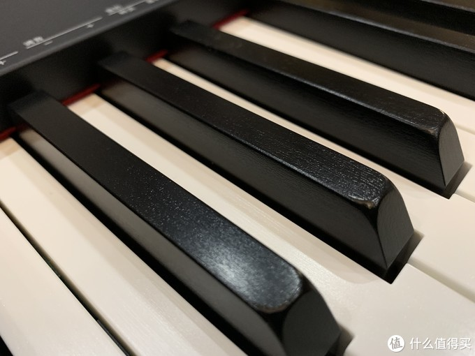 琴键的材质