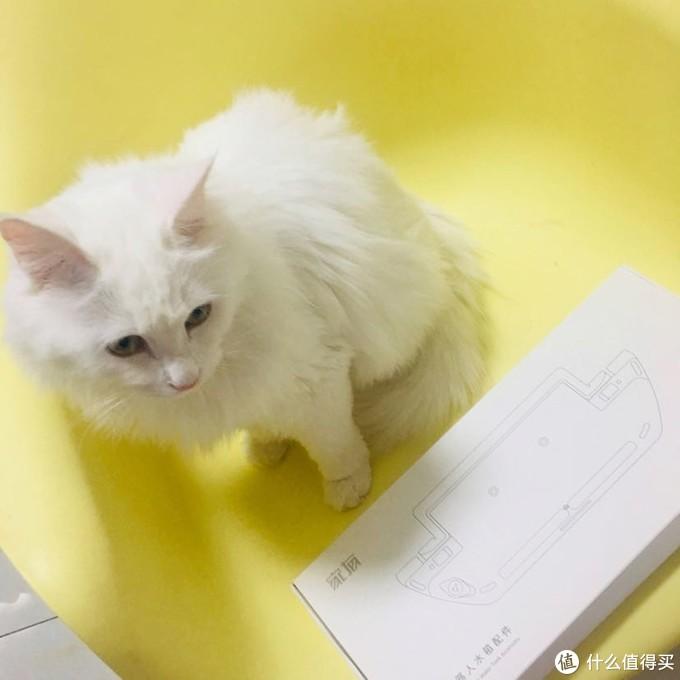 不到百元~将小米扫地机器人一代改造成带水箱的扫拖一体机器人 附猫猫图