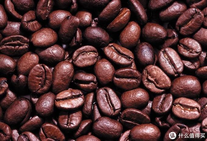 研究咖啡豆的出生地