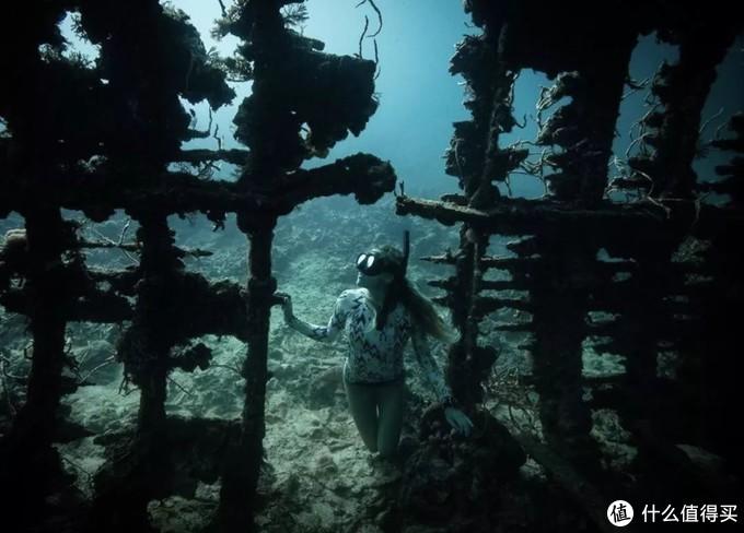 解锁海岛旅行新玩法:考一张潜水执照,探索地球70%的美