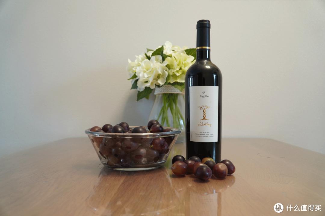 干货  选择智利进口红酒的几大理由。