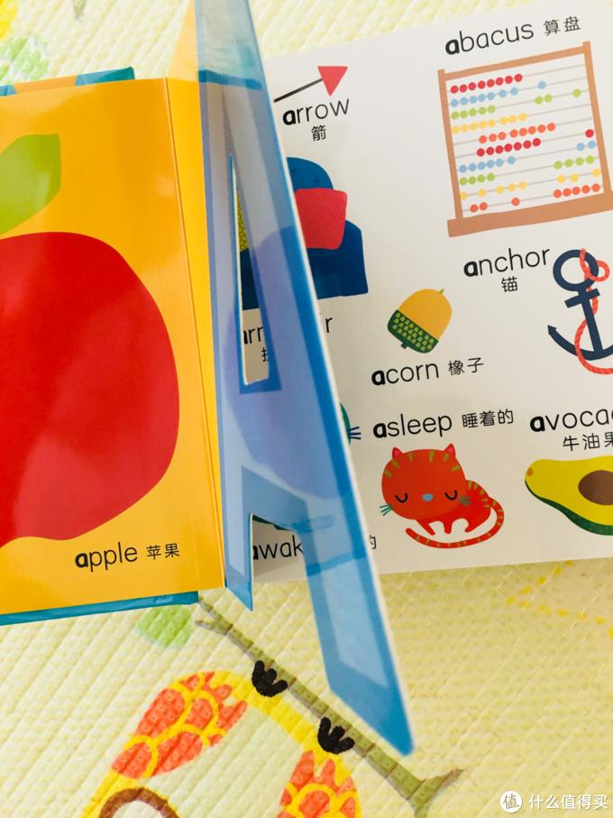 兴趣是最好的老师 分享两本有趣的英文纸板书
