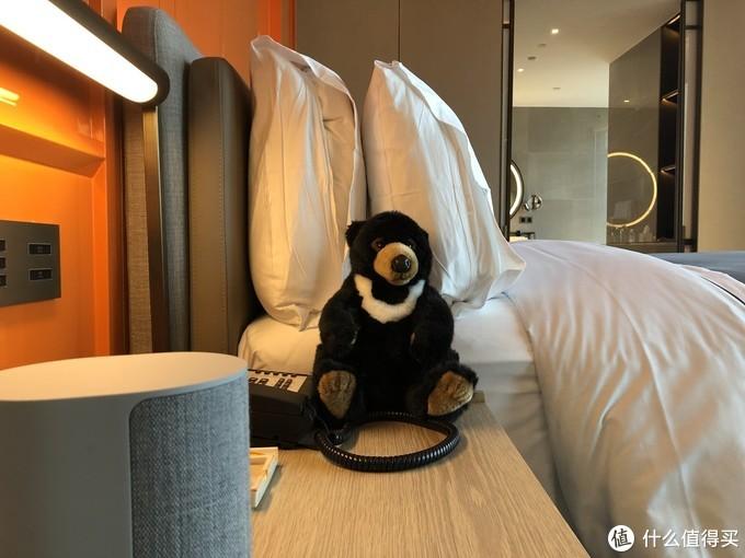 熊猫贡院大屋檐,强迫症想睡18晚 —— 枕着天府广场入眠