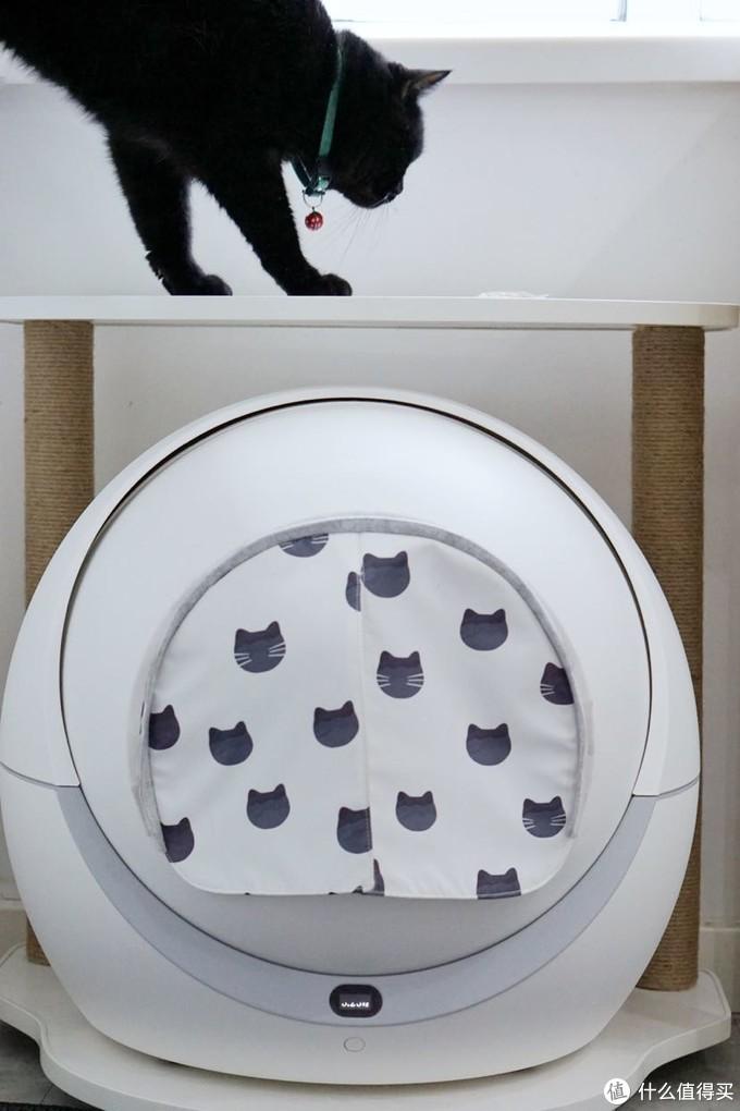 先说外形,Petree全自动猫砂盆外形白色,跟各种风格家居环境都要好搭易配。