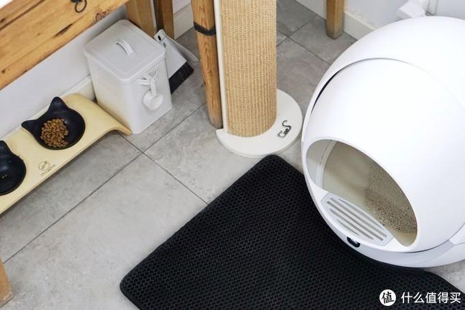 饭碗,猫抓板,厕所的位置。
