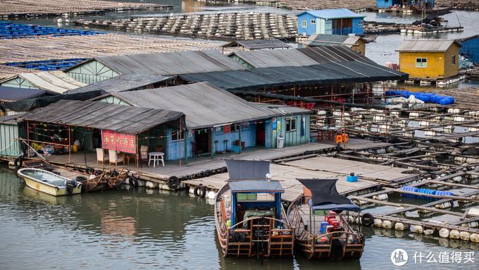这里就是鱼排上的酒家,前面鱼排里都是海鲜