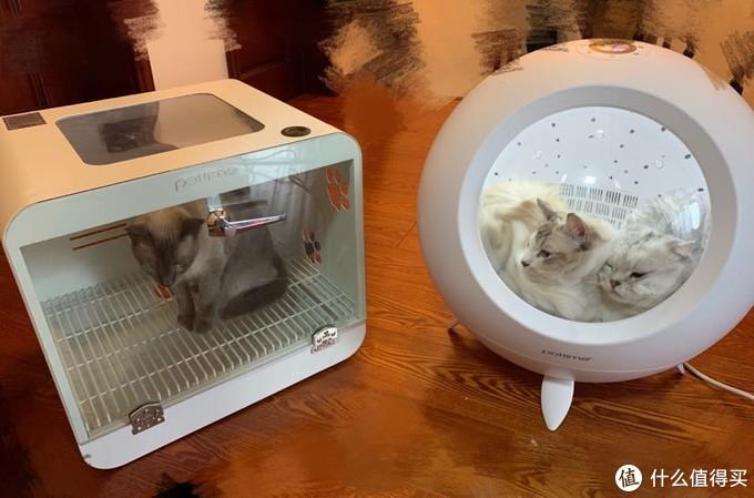 pettime 宠物烘干箱--新老对比,价格翻了3倍,是否值得购买