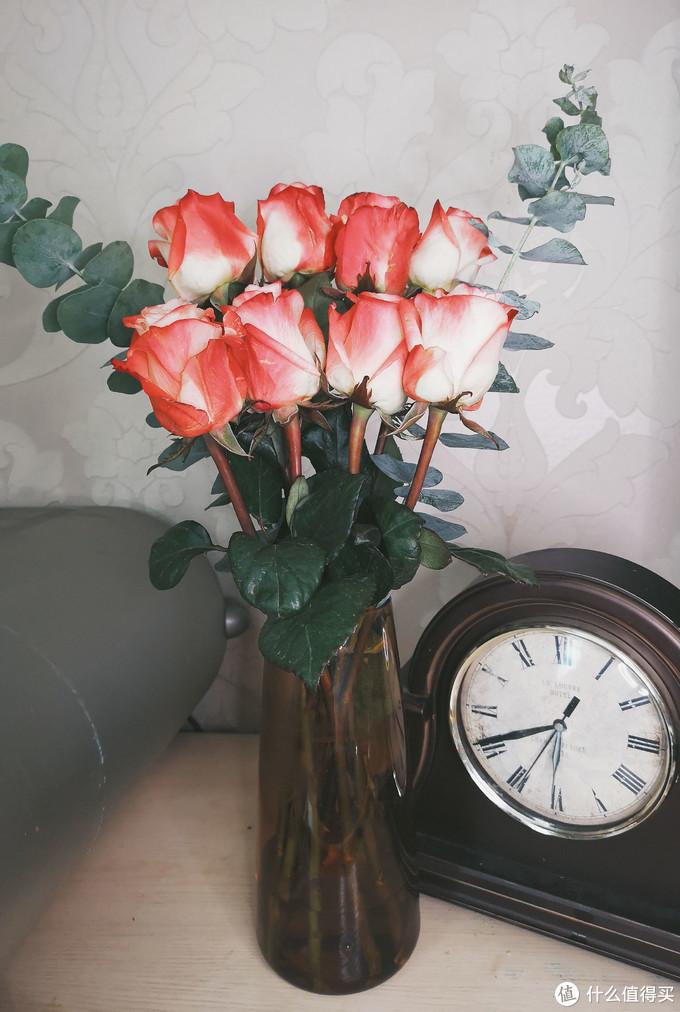 比实体店便宜七成,14种超人气玫瑰图鉴