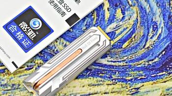 影驰名人堂HOF PCIe M.2 2280 512G SSD固态硬盘使用指南(散热马甲|金手指|读写速度|性能)