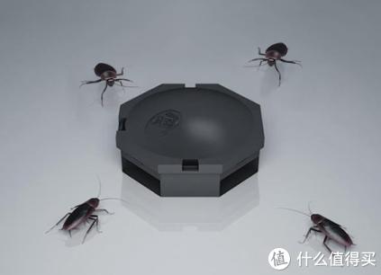 灭蟑螂失败,安速小黑帽没那么有效