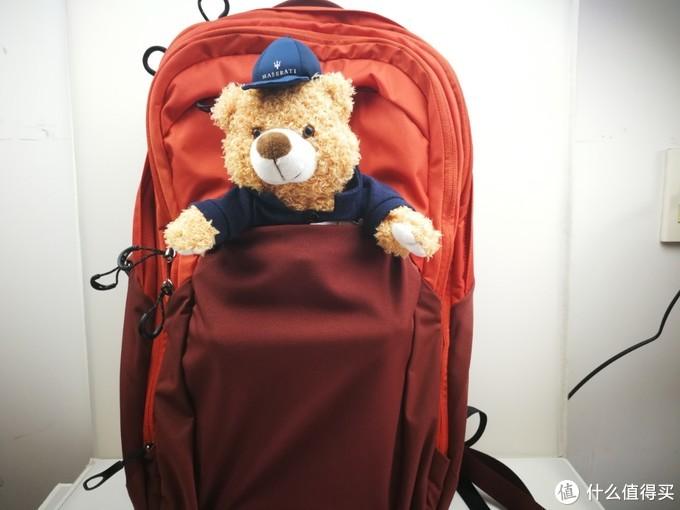 用一个20厘米的玩具熊作为展示。够大,够能装。