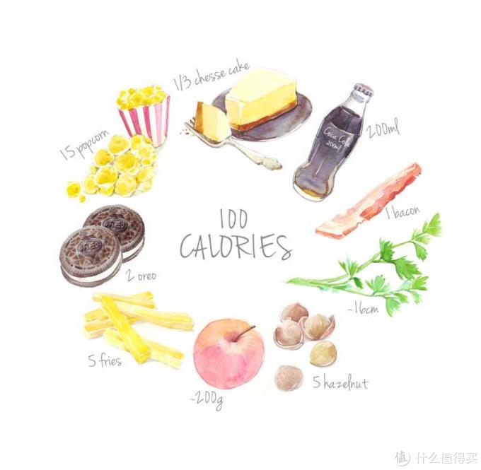 减肥第一步,控制卡路里——薄荷健康智慧营养师深度体验