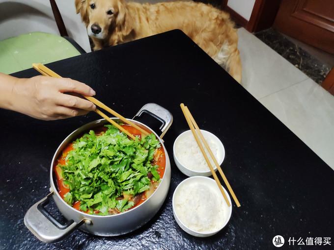 狗狗也闻到香味过来蹭饭了。