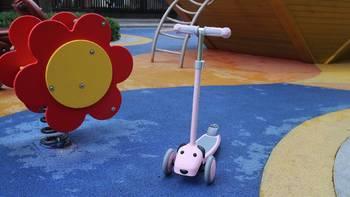 小寻萌宠狗狗滑板车使用总结(回弹|滑行)