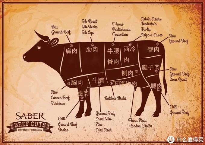 牛肉部位详解
