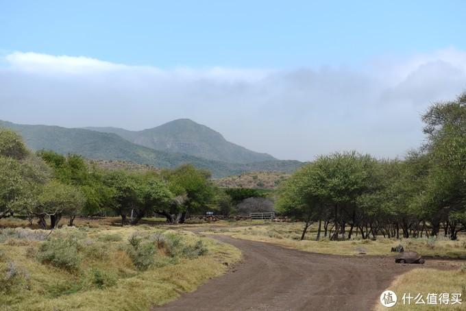 虽然没有在非洲大陆,但是这里已经充满了非洲的风情,和我脑海中想象的一模一样