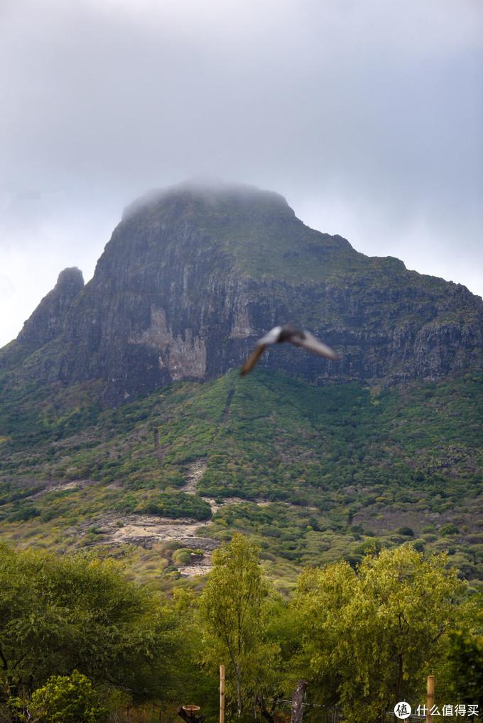 另一边的山峰也很美,不知道是不是他们的最高峰黑河峰