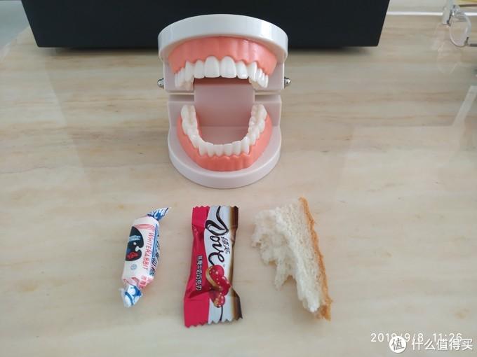 假牙与测试物