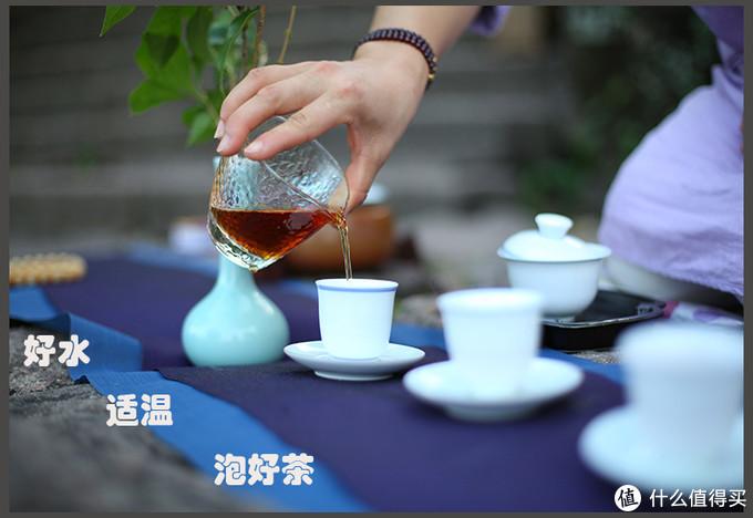 怎样才能泡一壶好茶——水为茶母、器为茶父