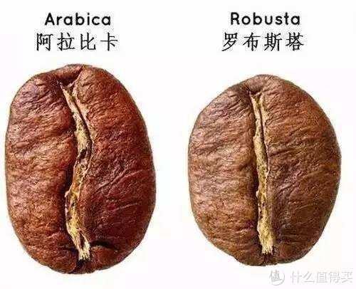 说说越南咖啡(附制作流程)