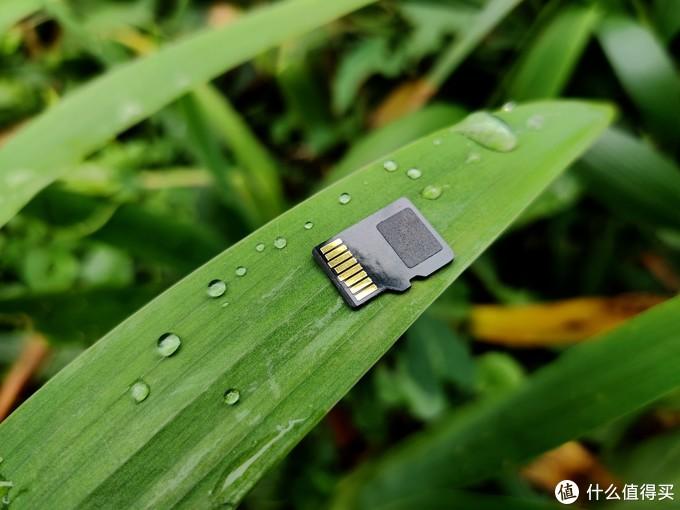 又快又稳,东芝M303E micro SD存储卡评测