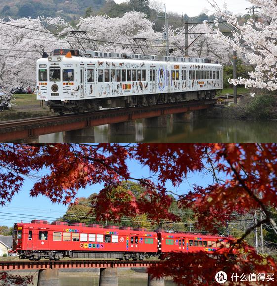 十一长假不去网红京阪奈打卡,物美小众的和歌山值得去之地推荐