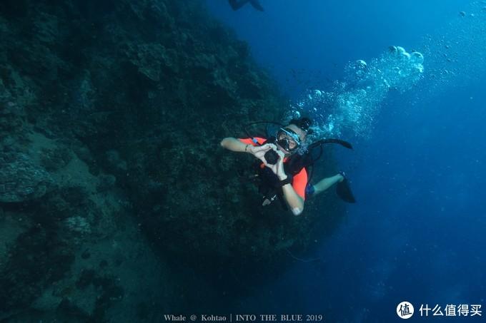 如何成为海的蛾子——泰国涛岛OW+AOW考证全攻略,附泰国车祸记录