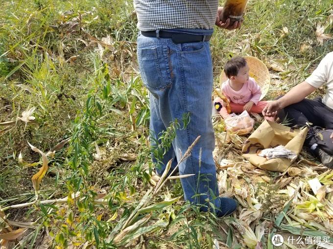 国庆假期----组团开荒玉米地副本