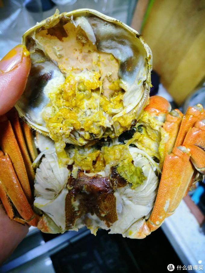 河海争霸,中外PK——大闸蟹梭子蟹和面包蟹,到底哪个吃着爽
