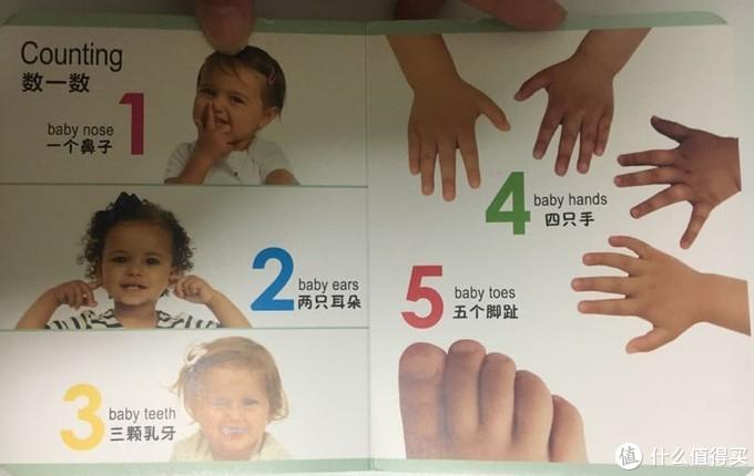 用五官、手、脚指头来教小朋友数数