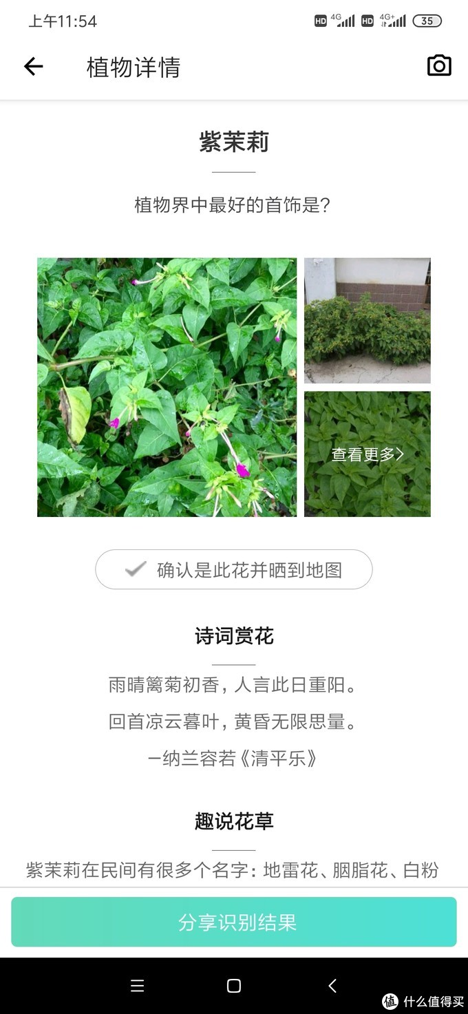 淮海路陕西南路交界襄阳公园(原法租界法国人设计的园林)没有围栏自由漫步
