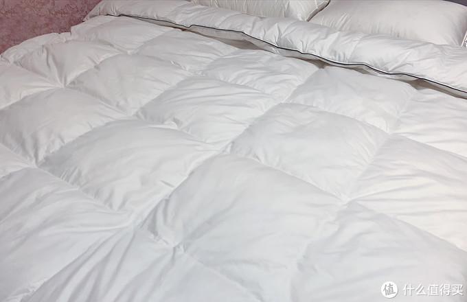 鹅绒被该如何挑选?真人实测、干货总结,让你选对床伴舒适入睡