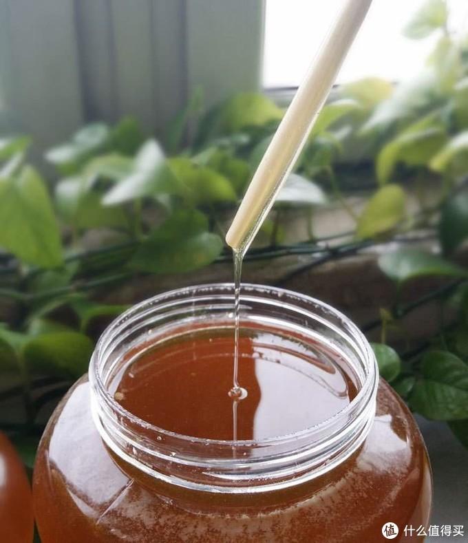 达文西之野生蜜蜂抓捕实录蜂蜜收割及蜂蜜真假辨别方法的辟谣