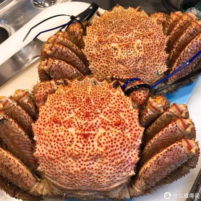 """以好吃和值得吃的程度来排名的话,这""""蟹""""吓不了人!"""