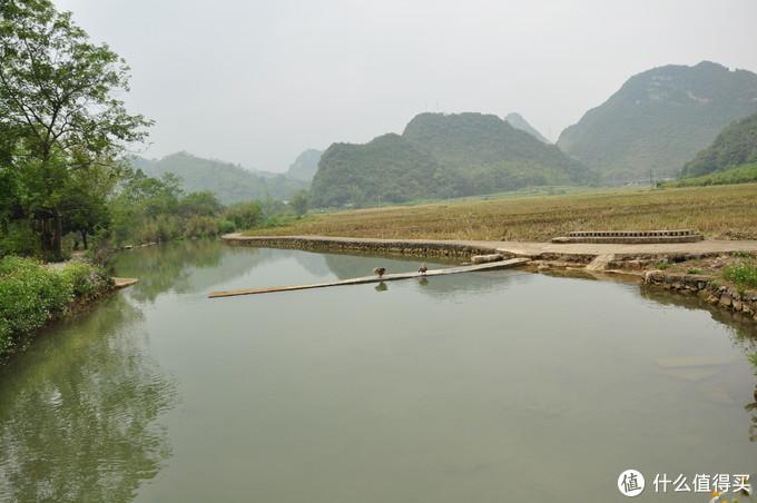 在坝子上的也是鸭子,洗衣服的地方给都给占领了,可惜天气一般,时晴时阴