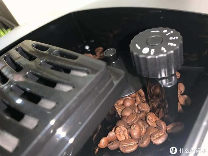 圣图咖啡机豆仓