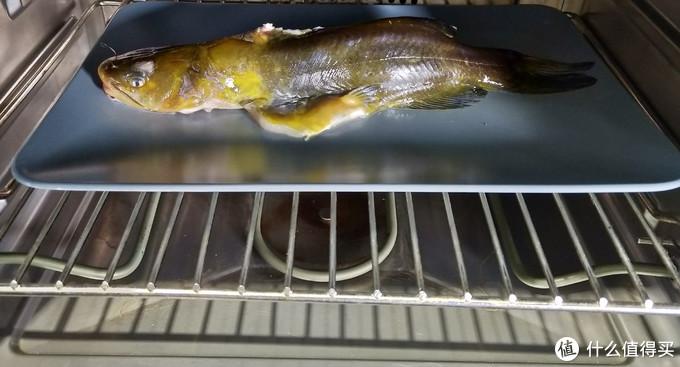 蒸烤箱推荐,自家体验实测,专业蒸的蒸烤箱烤箱才适合国内使用