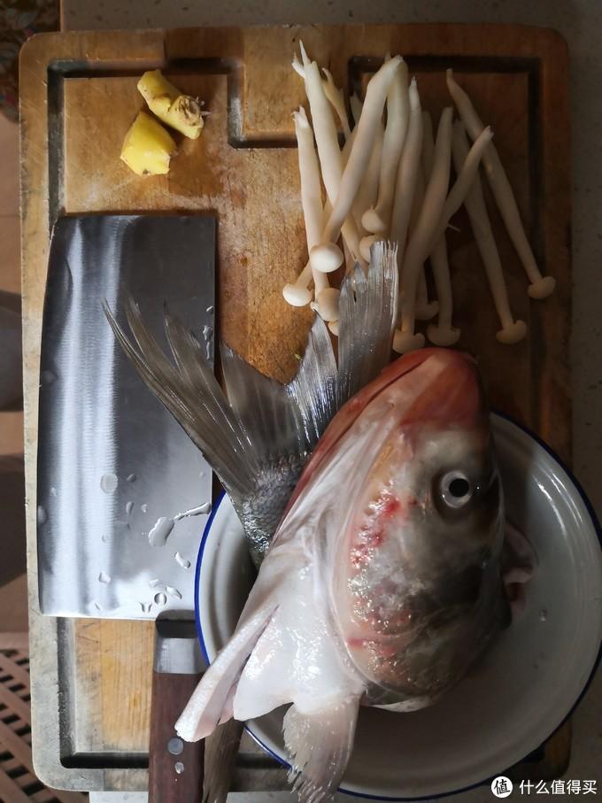 如何打造一个溪流缸之:认识鳑鲏鱼
