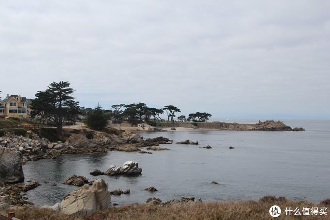 大海、沙石、树木