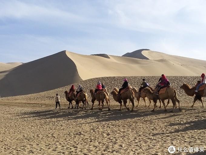 大漠里的驼队