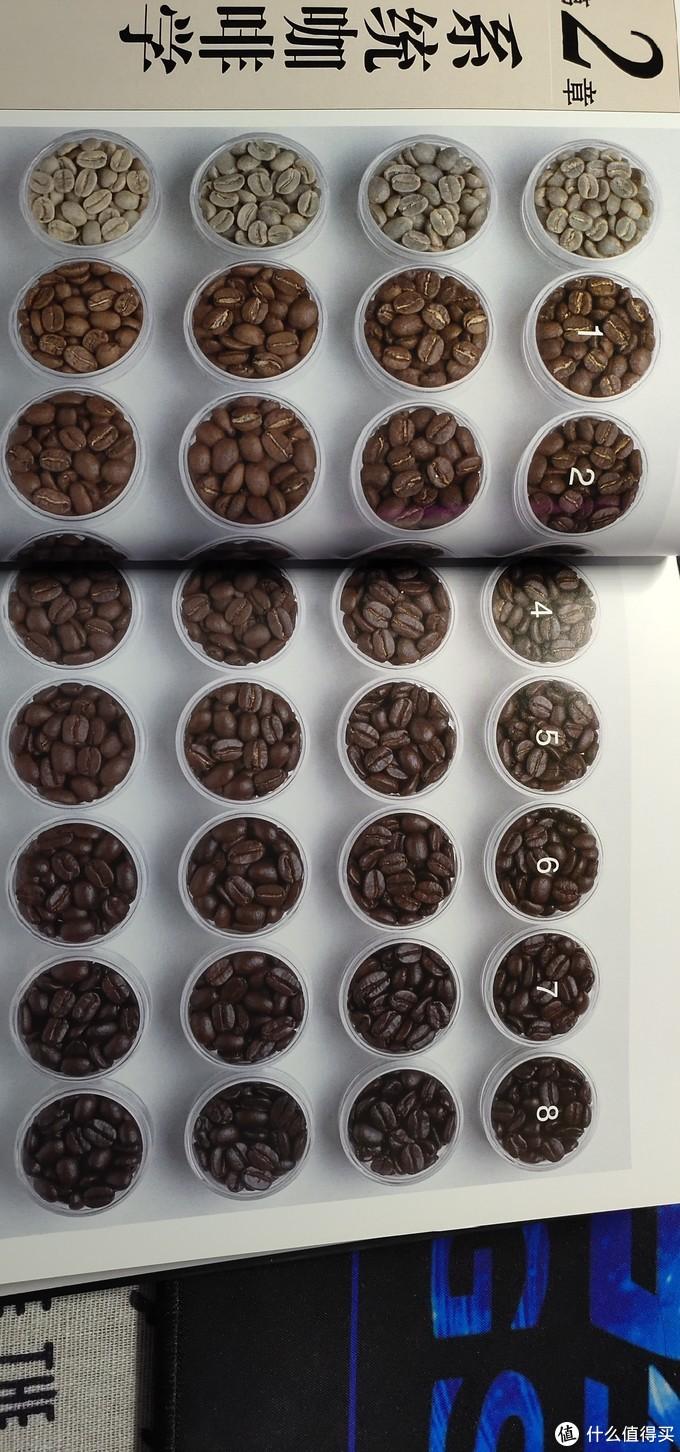 再议精品咖啡——入坑时那些你需要知道的事情