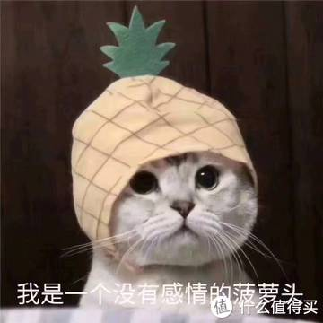 我是一个没有感情的菠萝头