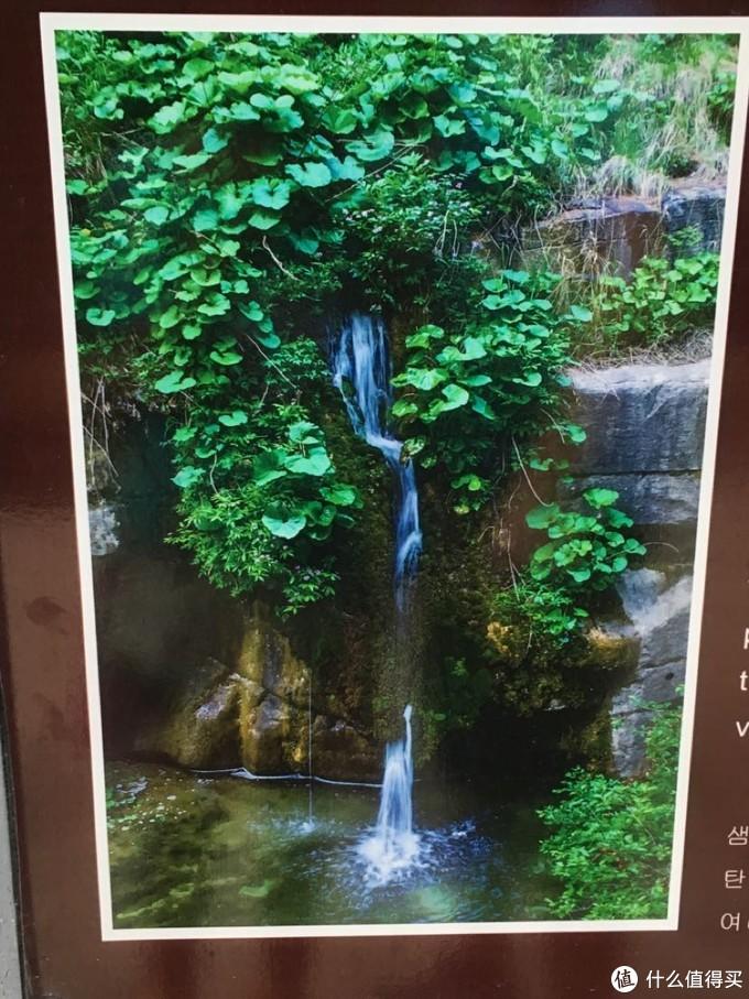八泉峡的水就是从这些石缝中涌出