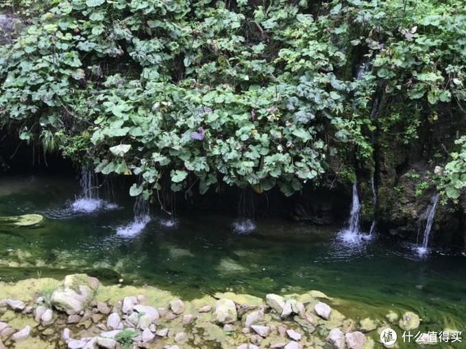 八泉都是从山岩石峰中经过层层过滤流到小潭中