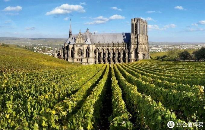 法国葡萄园中间常常是一个古堡